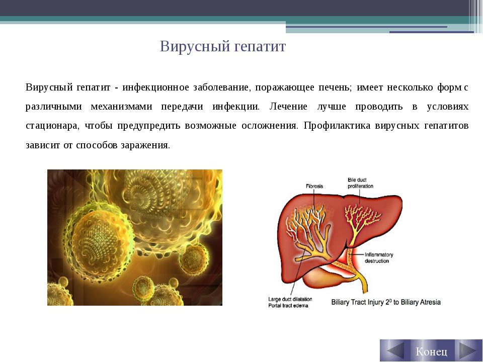 Вирусный гепатит Вирусный гепатит - инфекционное заболевание, поражающее пече...