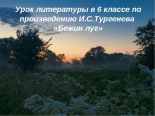 Урок литературы в 6 классе по произведению И.С.Тургенева «Бежин луг»