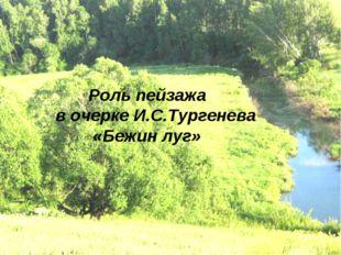 Роль пейзажа в очерке И.С.Тургенева «Бежин луг»
