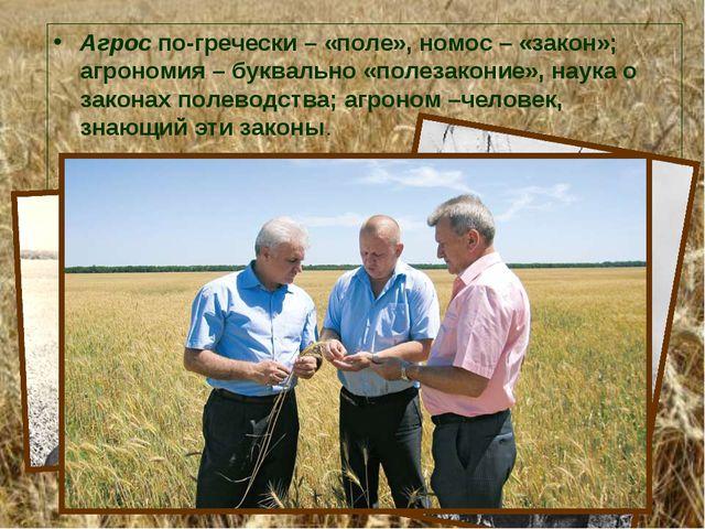 Агрос по-гречески – «поле», номос – «закон»; агрономия – буквально «полезакон...