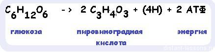hello_html_25fa486.jpg