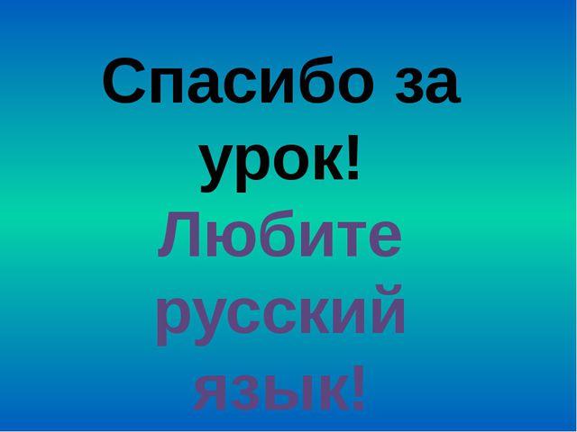 Спасибо за урок! Любите русский язык!