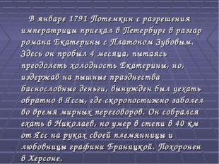 В январе 1791 Потемкин c разрешения императрицы приехал в Петербург в разгар
