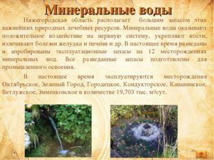 Минеральные воды Нижегородская область располагает большим запасом этих важн