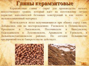 Глины керамзитовые Керамзитовые глины - сырьё для производства легкого искус