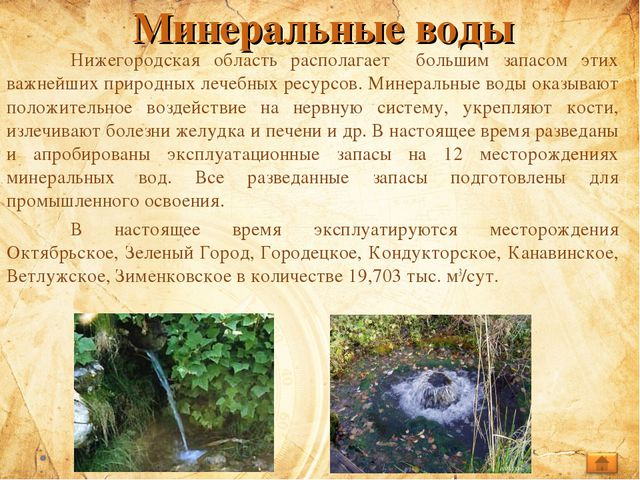 Минеральные воды Нижегородская область располагает большим запасом этих важн...