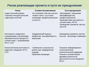 Риски реализации проекта и пути их преодоления Риски Условия возникновения Пу