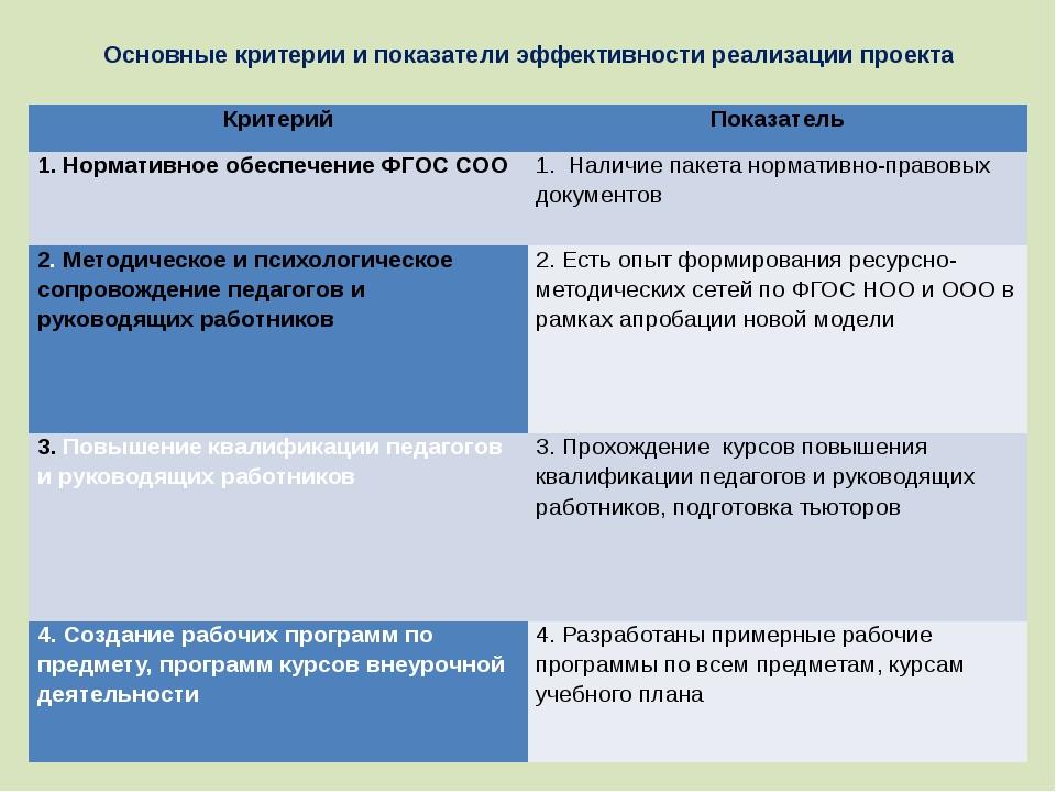 Основные критерии и показатели эффективности реализации проекта Критерий Пока...
