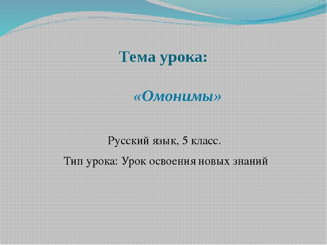 Тема урока: «Омонимы» Русский язык, 5 класс. Тип урока: Урок освоения новых з...