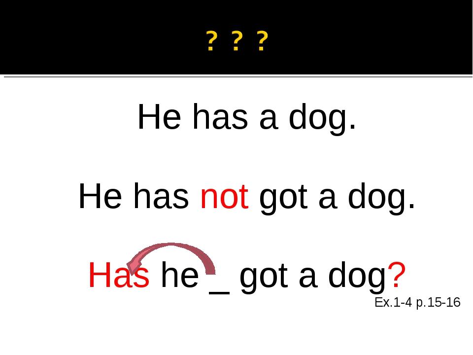 He has a dog. He has not got a dog. Has he _ got a dog? Ex.1-4 p.15-16