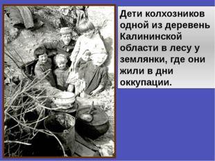 Дети колхозников одной из деревень Калининской области в лесу у землянки, где