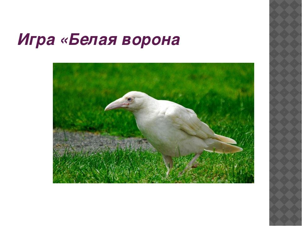 Игра «Белая ворона