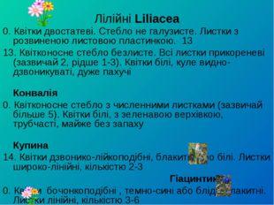 Лілійні Liliacea 0. Квітки двостатеві. Стебло не галузисте. Листки з розвинен