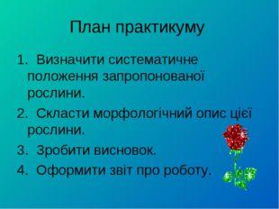План практикуму 1. Визначити систематичне положення запропонованої рослини. 2