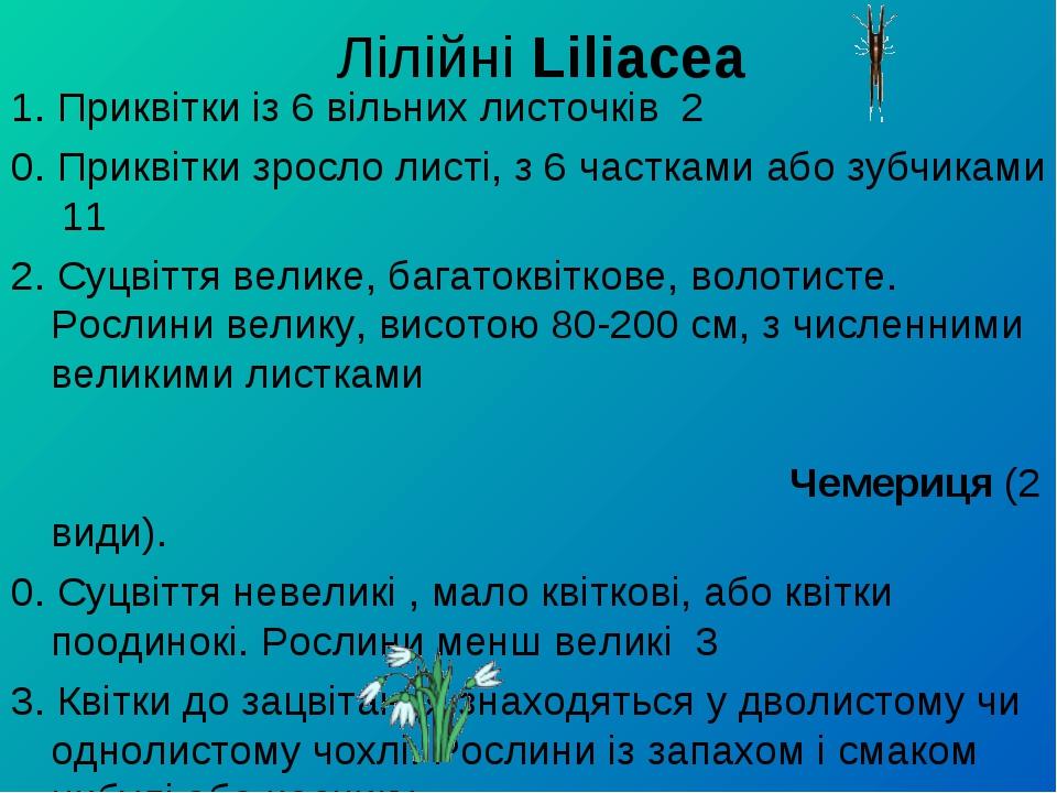 Лілійні Liliacea 1. Приквітки із 6 вільних листочків 2 0. Приквітки зросло л...