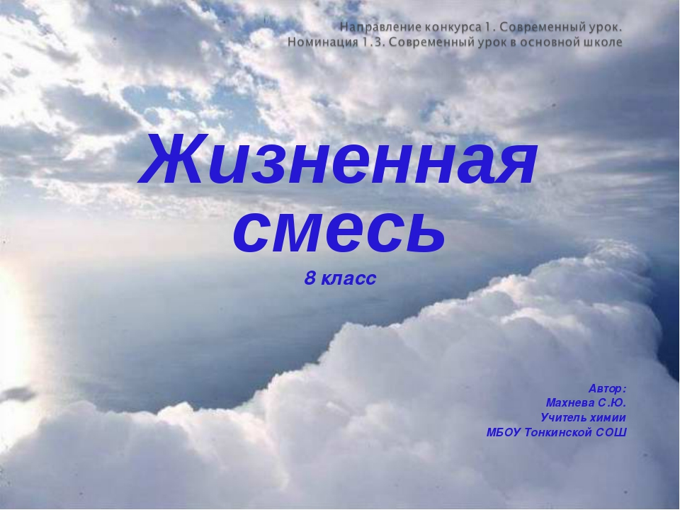 Жизненная смесь 8 класс Автор: Махнева С.Ю. Учитель химии МБОУ Тонкинской СОШ