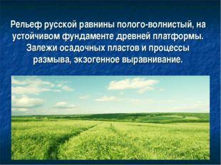 Рельеф русской равнины полого-волнистый, на устойчивом фундаменте древней пл