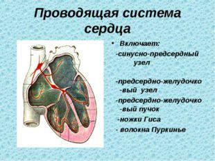 Проводящая система сердца Включает: -синусно-предсердный узел -предсердно-жел