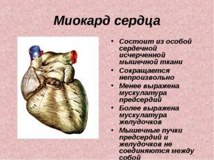 Миокард сердца Состоит из особой сердечной исчерченной мышечной ткани Сокраща