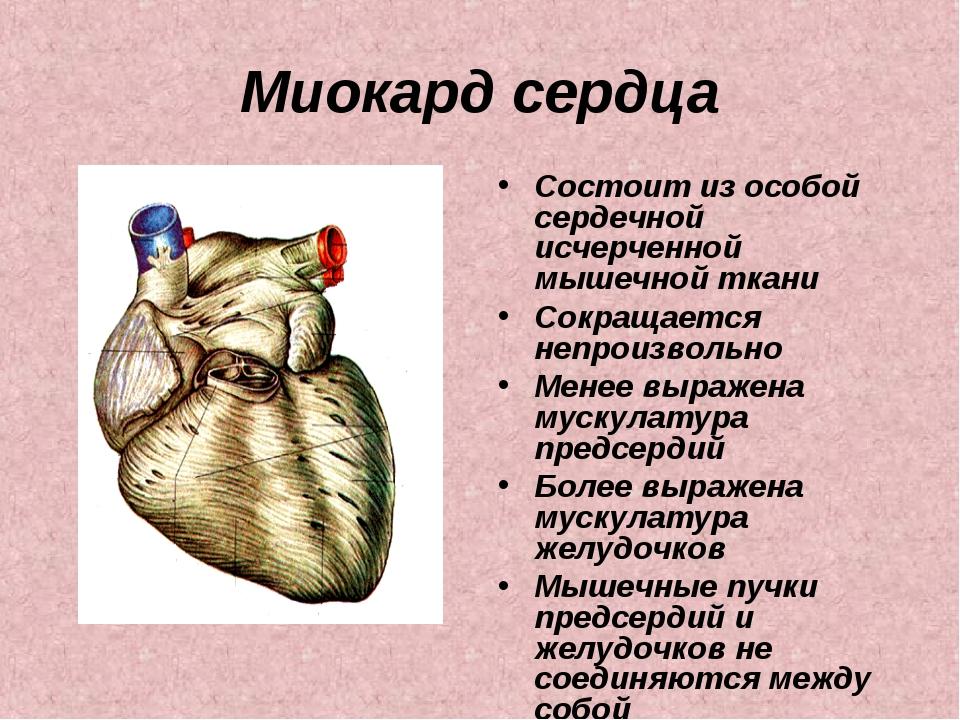 Миокард сердца Состоит из особой сердечной исчерченной мышечной ткани Сокраща...