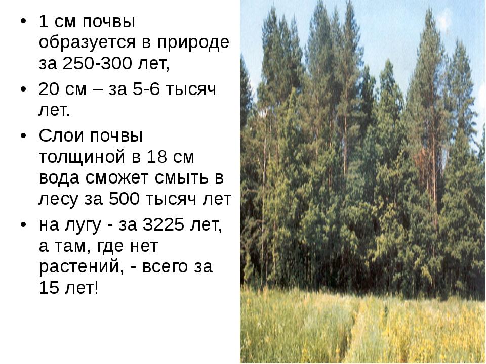 1 см почвы образуется в природе за 250-300 лет, 20 см – за 5-6 тысяч лет. Сло...