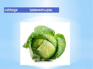 cabbage орамжапырақ