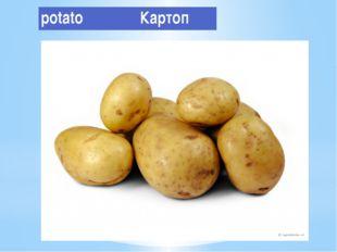 potato Картоп
