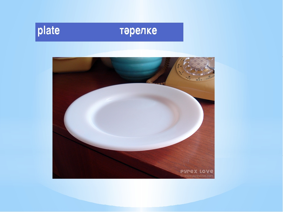 plate тәрелке