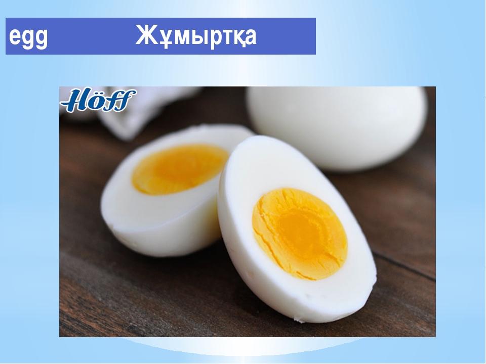 egg Жұмыртқа