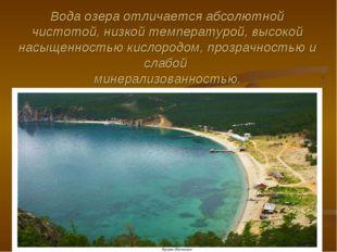 Вода озера отличается абсолютной чистотой, низкой температурой, высокой насыщ