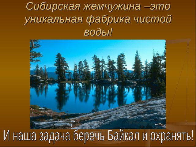 Сибирская жемчужина –это уникальная фабрика чистой воды!