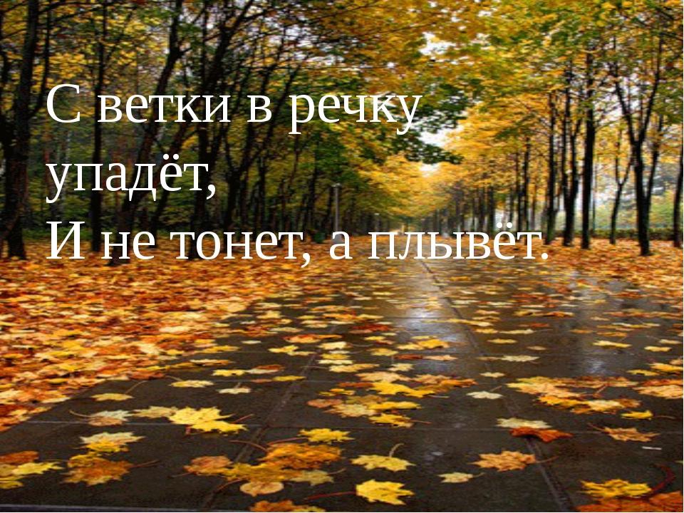 С ветки в речку упадёт, И не тонет, а плывёт.