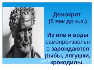 Демокрит (5 век до н.э.) Из ила и воды самопроизвольно зарождаются рыбы, лягу