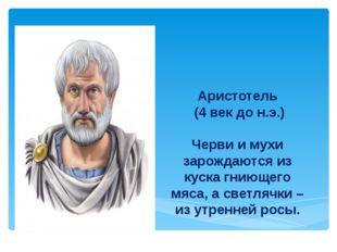 Аристотель (4 век до н.э.) Черви и мухи зарождаются из куска гниющего мяса, а