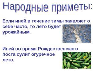 Если иней в течение зимы заявляет о себе часто, то лето будет урожайным. Иней