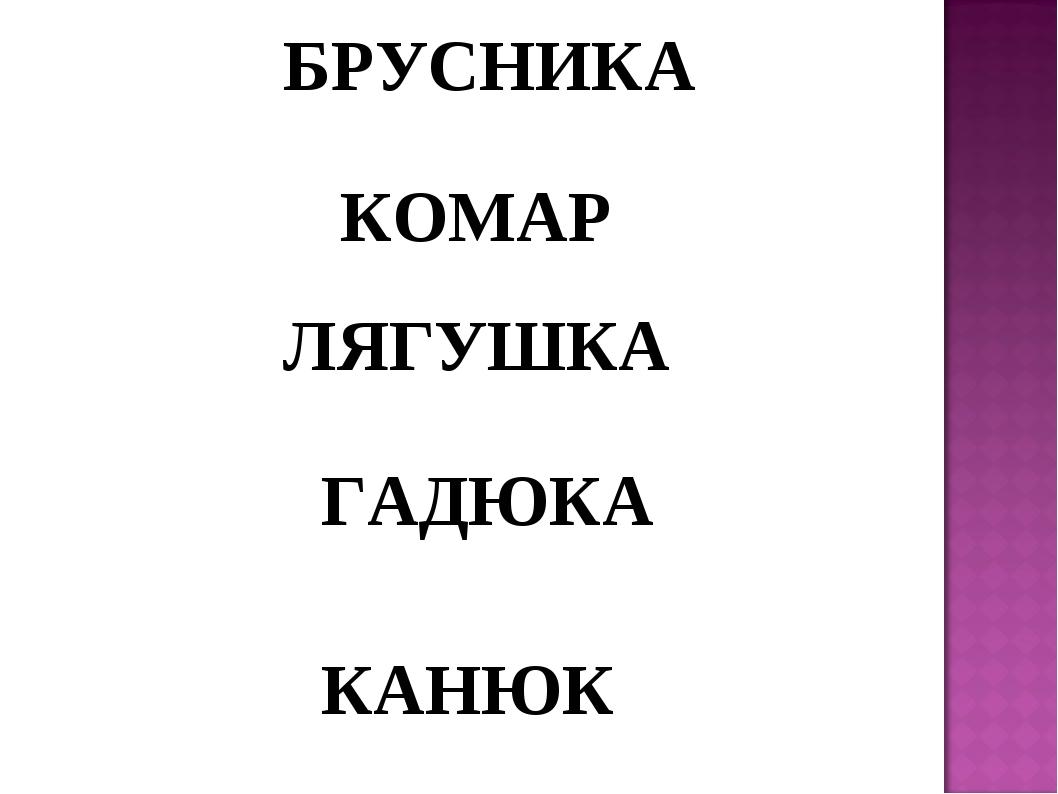 БРУСНИКА КОМАР ЛЯГУШКА ГАДЮКА КАНЮК