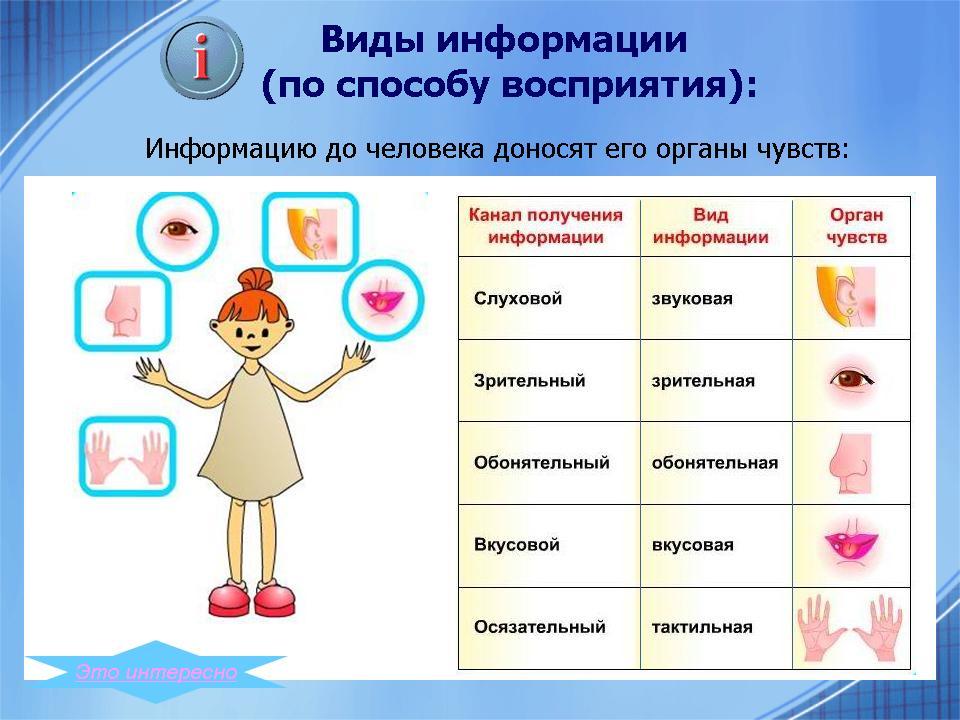 http://festival.1september.ru/articles/624040/presentation/05.JPG