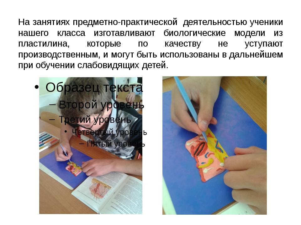 На занятиях предметно-практической деятельностью ученики нашего класса изгота...