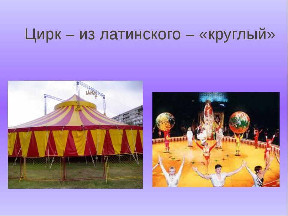 Цирк – из латинского – «круглый»