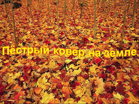 hello_html_493b1956.png