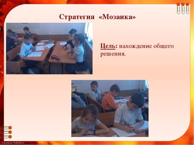 Цель: нахождение общего решения. Стратегия «Мозаика» FokinaLida.75@mail.ru