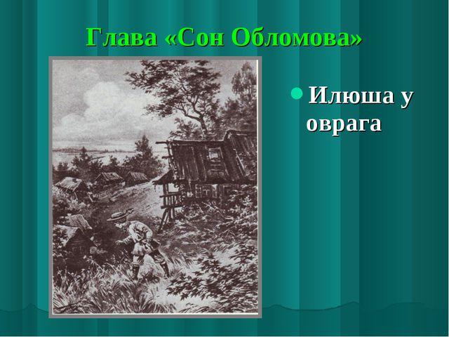 Глава «Сон Обломова» Илюша у оврага