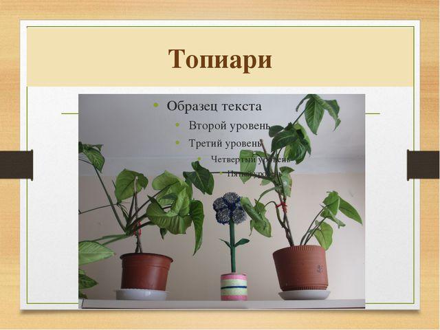 Топиари