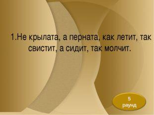 1.Не крылата, а перната, как летит, так свистит, а сидит, так молчит.