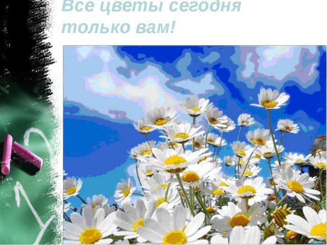 Все цветы сегодня только вам!