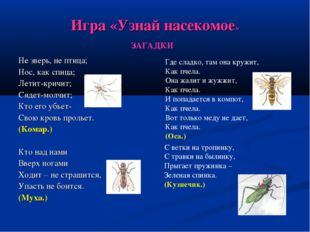 Игра «Узнай насекомое» Не зверь, не птица; Нос, как спица; Летит-кричит; Сяде