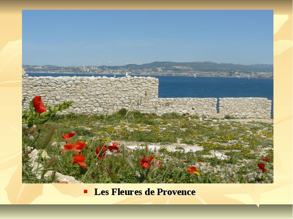 Les Fleures de Provence