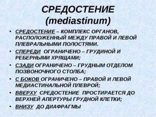 СРЕДОСТЕНИЕ (mediastinum) СРЕДОСТЕНИЕ – КОМПЛЕКС ОРГАНОВ, РАСПОЛОЖЕННЫЙ МЕЖДУ