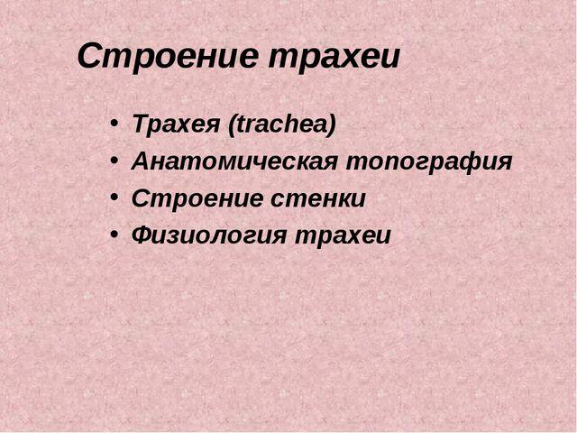 Строение трахеи Трахея (trachea) Анатомическая топография Строение стенки Физ...