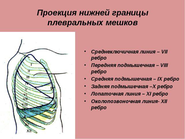 Проекция нижней границы плевральных мешков Среднеключичная линия – VII ребро...